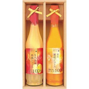 (まとめ)飛騨高山ファクトリー 果実搾り C8250076【×2セット】