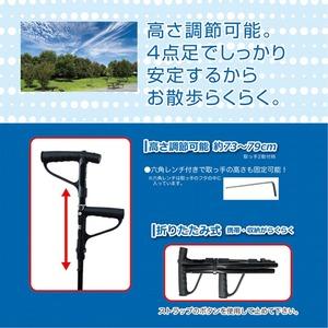 (まとめ)マクロス しっかり安定杖 らくらく散歩 MCZ-111【×2セット】