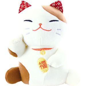 (まとめ)もちっとぐるみ 招き猫 C9079664【×2セット】