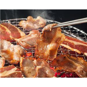 亀山社中 焼肉・BBQボリュームセット 5.1kg