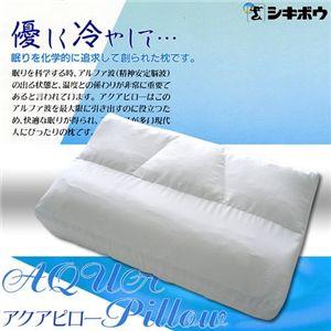 アイスボディネオ「北極枕」