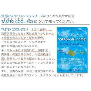 涼感ひんやり2℃クールシリーズ敷パッド シングル ブルー