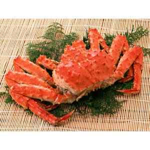 たらば蟹の旨さは何といってもその食べ応え!ガブリと豪快にその太い脚を頂く嬉しさはたらば蟹ならではのものでしょう。特に今回御用意させて頂いたサイズはびっくりのキングサイズ2kg超!!これならタラバの旨さを知っている方も満足していただけることでしょう。お送りするタ…