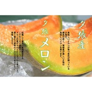 共選夕張メロン(品質【秀】)1.3kgサイズ2玉(中)