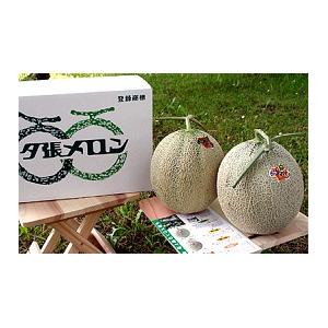 共選夕張メロン(品質【良】)1.3kgサイズ3玉(中)