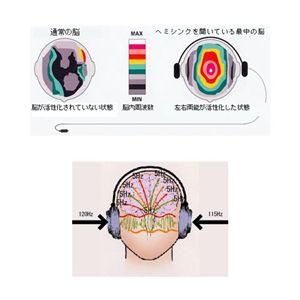 ゴーイングホームサブジェクト巻 日本語版