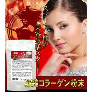 栄養補助食品 凝縮コラーゲン粉末 90g 【5袋セット】