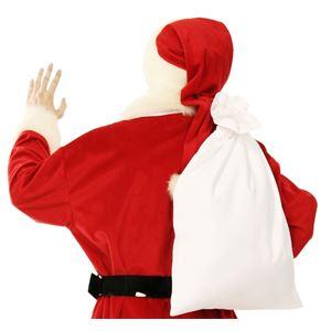 サンタさんの袋 4571142444510