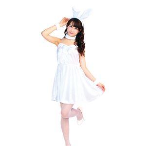 コスプレ衣装/コスチューム 【ホワイトバニー】 レディース155cm〜165cm 『トキメキグラフィティ TG』