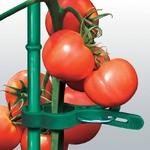 野菜などの茎をワンタッチ固定 サポートクリップ 100個セット