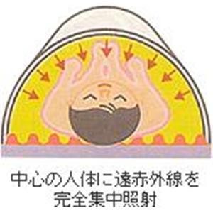 フジカ・スマーティー F4-NX