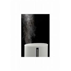 アイアン スチーム加湿器 霧子 ホワイト
