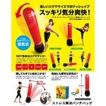 ストレス解消パンチバック/エクササイズ器具 【空気式】 エアーポンプ・リペアキット付き