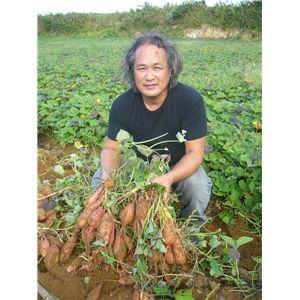 幻の蜜芋・種子島あんのう芋2種セット 5kg(紅芋・黄金芋)