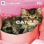 写真素材 DAJ032 CAT 【かわいい子猫】