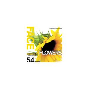 写真素材 SUPER FINE No.1 FLOWERS (花々)