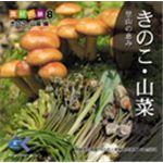 写真素材 マルク 食材の旅:8 松茸 ナメコ 椎茸(きのこ・山菜編)