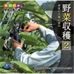 写真素材 マルク 食材の旅9「野菜収穫2」編