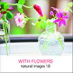 写真素材 naturalimages Vol.18 WITH FLOWERS