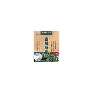 写真素材 素材辞典Vol.26 森林 木立