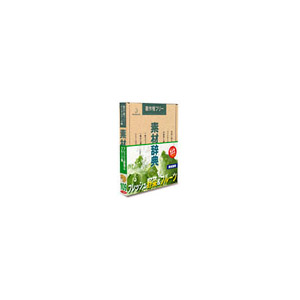 写真素材 素材辞典Vol.109 フレッシュ野菜 フルーツ