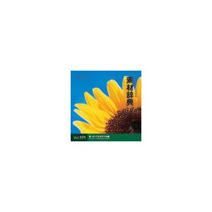 写真素材 素材辞典Vol.171 夏-ポップ&カラフル編