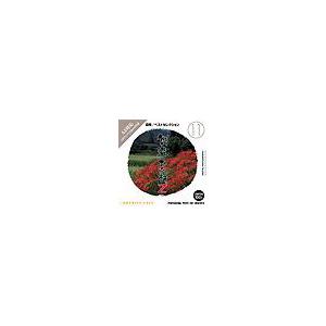 写真素材 創造素材 Zシリーズ [11] 四季/ベストセレクション
