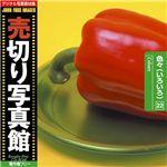 写真素材 売切り写真館 JFI Vol.022 色々(いろいろ) Colours