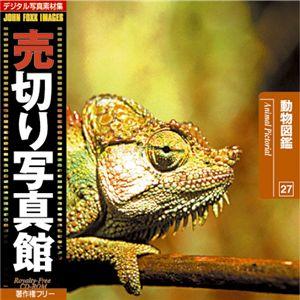 写真素材 売切り写真館 JFI Vol.027 動物図鑑 Animal Pictorial