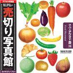 写真素材 VIP Vol.23 スーパーリアルイラスト/食材 売切り写真館 フード