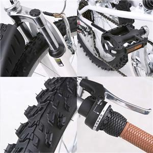 MY PALLAS(マイパラス)M-10 折り畳み自転車 20インチ6段変速ダブルサス ブラック