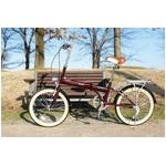 MYPALLAS(マイパラス) 折り畳み自転車 20インチ M-240 ライト付 ブラウン M-240BR ブラウン