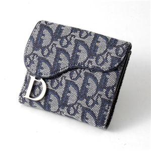 Christian Dior トロッター ダブルホック財布 SLO43025 B3A3・Blue×Argent