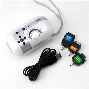 携帯充電対応 手回しラジオライト TSI-JK631