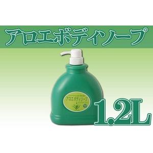アロエエキス(うるおい成分)配合 アロエボディソープ 1.2L 2本セット