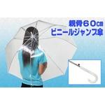 ビニールジャンプ傘 【親骨60cm×3本セット】