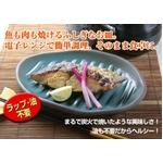 電子レンジ調理器 ふしぎなお皿(レシピ本付き)