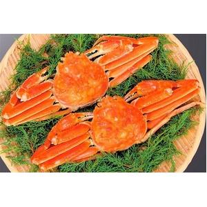 【北海道産】身入りたっぷり!ボリューム満点!蟹の女王まるごとずわいがに(ボイル) 約800g×2ハイ