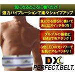 DX PERFECT BELT(デラックスパーフェクトベルト)