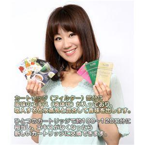 「TaEco」(タエコ)専用交換カートリッジ(ミルクキャラメル)15本入り