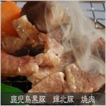 鹿児島黒豚 輝北豚 焼肉用 うで500g
