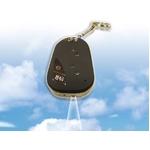 小型カメラ【2010春モデル】 カーリモコン型ビデオレコーダー 8GB対応【VGA/130万画素】