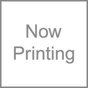 DAINICHI(ダイニチ) 加湿器フィルター 抗菌気化フィルター H060502