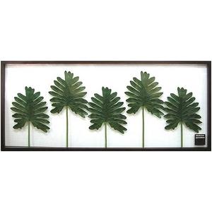 風景専門店あゆわら 《リーフパネル》Philodendron bipinnatifidum(セローム ヒトデカズラ) タイプ1 【サイズ 1375x570x30mm】