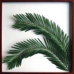 風景専門店あゆわら 《リーフパネル》Elaeis guineensis(ギニアアブラヤシ) タイプ2 【サイズ 625x625x30mm】