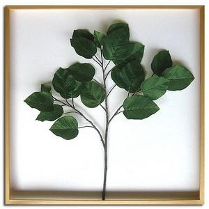 風景専門店あゆわら 《リーフパネル》Ficus Umbellata(フィカス ウンベラータ) タイプ1 【サイズ 840x840x50mm】