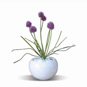風景専門店あゆわら 《人工観葉植物・造花》Allium/red(アリウム)