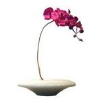 《造花・花瓶》F-style vase Moth orchid(モス・オーキッド(胡蝶蘭))
