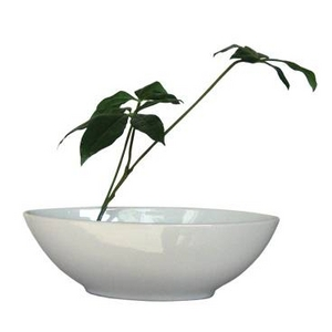 風景専門店あゆわら 《造花・花瓶》F-style vase Pachira glabra(パキラ グラブラ)