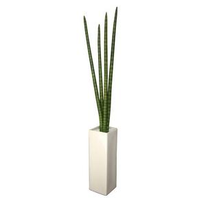 風景専門店あゆわら 《人工観葉植物》F-style vase Sansevieria Stucky(サンセベリア スタッキー)